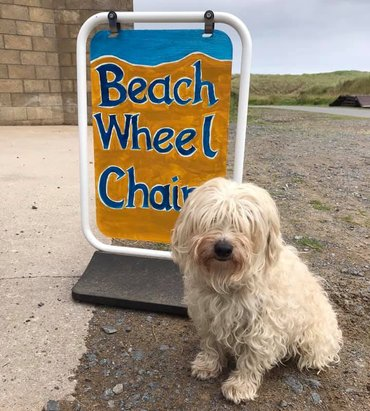 Project dog sitting in front of the Balmedie Beach Wheelchairs sign