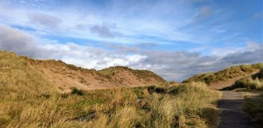View of the sand dunes at Balmedie Country Park